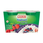 Yoghurt Non Fat Mix Berries 2sX140g