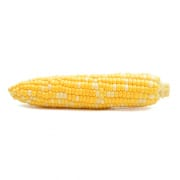 Bi-colour Corn