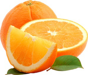 Navel Orange (Large) 1s