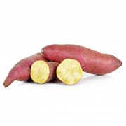 Japanese Variety Sweet Potato
