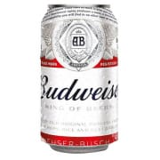 Beer Can 355ml