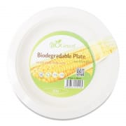 Biodegradable Plate 9
