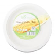 Biodegradable Plate 7
