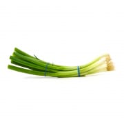 Scallion China
