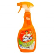 Mold & Mildew Cleaner 500ml