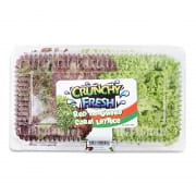 Red & Green Coral Lettuce +/-200g