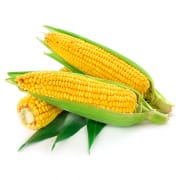 Organic Thai Sweet Corn
