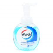 Antibacterial Foaming Hand Wash Moisture Refreshing 300ml