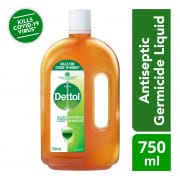 Antiseptic Liquid 750ml