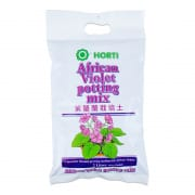 Horti African Violet Mix