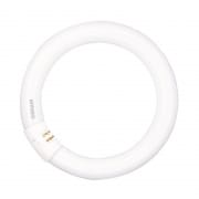 Circular Fluorescent Lamp - Lumilux Cool Daylight L32W/865