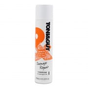 Damaged Repair Conditioner 250ml
