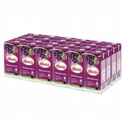 Fruit Drink Blackcurrant 24sX200ml