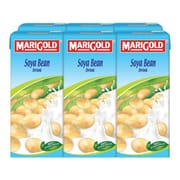 MARIGOLD Soya Bean Milk 6sX250ml