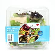 American Salad Bowl Ready To Eat 125g