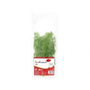 LUSHIOUS Fresh Herbs - Dill 10g
