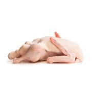 Whole Duck (Non-Halal) +/-1.9Kg
