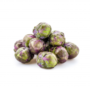 Purple Brussel Sprout Holland